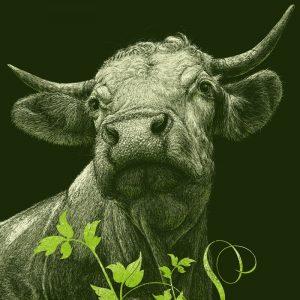 Vegan Art, Roland Straller